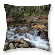 Fodder Creek Throw Pillow