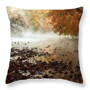 Fog And Color Throw Pillow