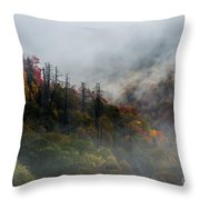 Fog And Color. Throw Pillow