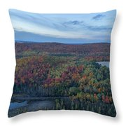 Fog And Fall Colors Throw Pillow
