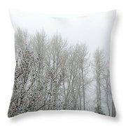 Fog And Light Snow Throw Pillow