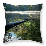 Fog And Reflection Of Stream Throw Pillow