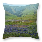 Fog And Wildflowers At Bear Mountain Throw Pillow