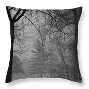 Fog At Metro Beach Throw Pillow
