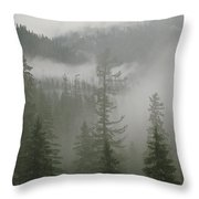 Fog Hangs In A Valley Of Evergreens Throw Pillow