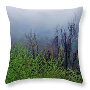 Fog In The Mountains Throw Pillow