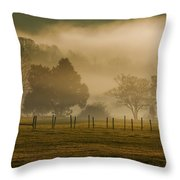 Fog In The Park Throw Pillow