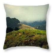 Fog Over The Lagoon Throw Pillow