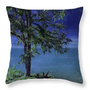 Fog Over The Pond Throw Pillow