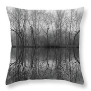 Foggy Lagoon Reflection #3 Throw Pillow