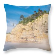 Foggy Afternoon  Throw Pillow