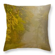 Foggy Autumn Morn Throw Pillow