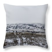 Foggy Battle Throw Pillow