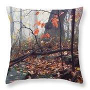 Foggy Fall Woodland Morning Throw Pillow