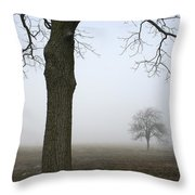 Foggy Field Throw Pillow
