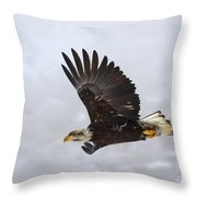 Foggy Flight Throw Pillow
