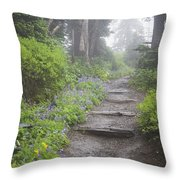 Foggy Forest Path Throw Pillow