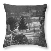Foggy Frosty Morning Throw Pillow