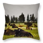 Foggy Herd Throw Pillow