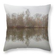Foggy Lagoon Reflection #5 Throw Pillow