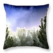 Foggy Moonlit Night Throw Pillow
