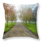 Foggy Morning At The Park Throw Pillow