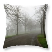Foggy Morning At The Park Winding Path Throw Pillow