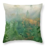 Foggy Morning In Humbolt County California Throw Pillow