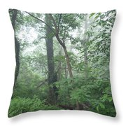 Foggy Morning In The Woods Throw Pillow