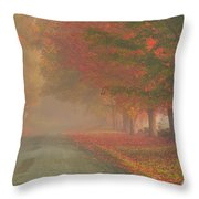 Foggy Morning On Cloudland Road Throw Pillow