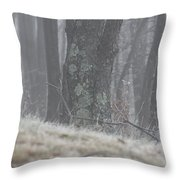 Foggy Moss Throw Pillow