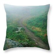Foggy Mountain Path Throw Pillow