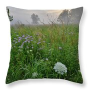 Foggy Prairie In Glacial Park In Mchenry County Throw Pillow