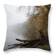 Foggy River Bank Throw Pillow