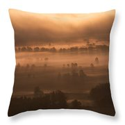 Slovenia - Ljubljana Marshes - Foggy Morning Throw Pillow