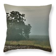 Foggy Tree In The Field Throw Pillow
