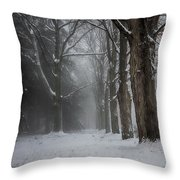 Foggy Vermont Winter Path Throw Pillow