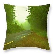 Foggy Way.  Throw Pillow