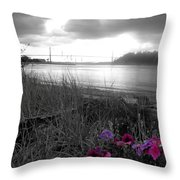 Foggy, Wet View Throw Pillow