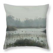 Foggy Wetlands Throw Pillow