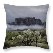 Foggy Winter Morning In The Supes  Throw Pillow