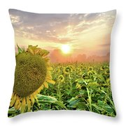 Foggy Yellow Fields 3 Throw Pillow