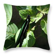 Folded Up - Green And Black Butterfly Throw Pillow
