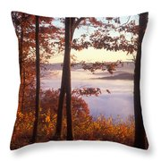 Foliage Above Valley Fog Throw Pillow