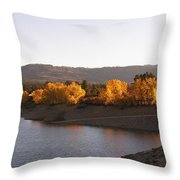 Foliage At Jackson Lake Throw Pillow