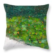 Foliage At Sanibel Throw Pillow