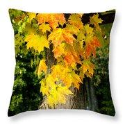 Foliage Fall Throw Pillow
