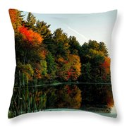 Foliage Reflections Throw Pillow