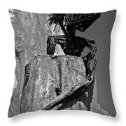 Follow Me ... Throw Pillow