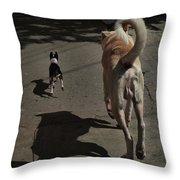 Follow Me... Throw Pillow